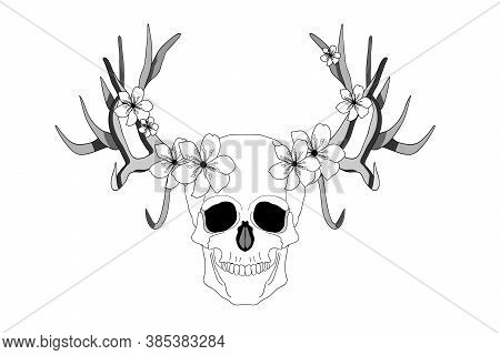 Psychedelic Skull. Realistic Horrible Colorful Black And White Human Skull With Large Sharp Deer Ant