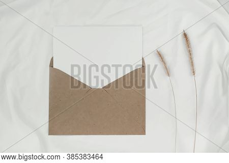 Blank White Paper Is Placed On The Open Brown Paper Envelope With Bristly Foxtail Dry Flower On Whit