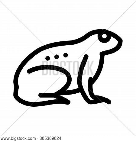 Tropical Frog Icon Vector. Tropical Frog Sign. Isolated Contour Symbol Illustration
