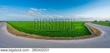 Hairpin Bend Road Near Rice Fields In Valencia