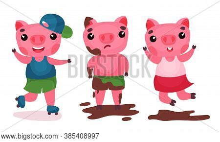 Funny Pig Roller Skating And Jumping In Puddle Vector Set
