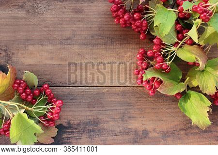 Red Viburnum Berries On A Branch On Wooden Background. Natural Autumn Berries Frame. Top View, Copy