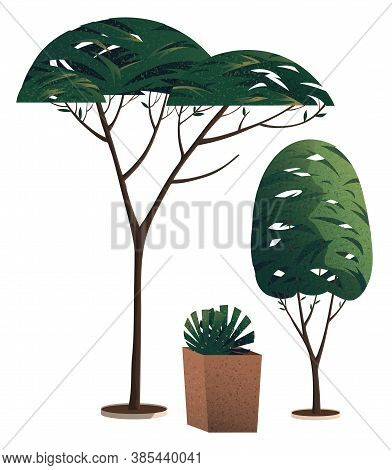 Green Simple Graphic Arts Tree And Bush, Thin Brown Trunk And Branches, Potted Plant Isolated On Whi