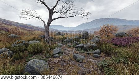 Beautiful Landscape Scenery Of Forest Mountains , And Single Tree With No Leaves Standing Alone In F