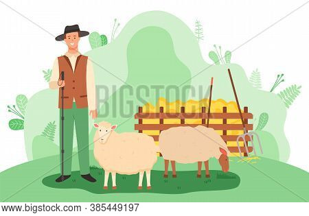 Young Smiling Shepherd In Hat With Stick Stands Near The Sheep On Green Meadow. Haystack, Rake, Spad