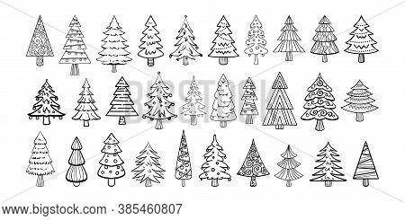 New Year Vector Doodle Christmas Trees. Big Collection Of Christmas Trees With Black Lines Isolated.