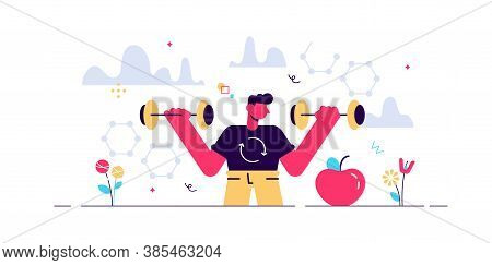 Male Metabolism Vector Illustration. Food To Energy Process. Flat Tiny Person Concept. Nutrition Che