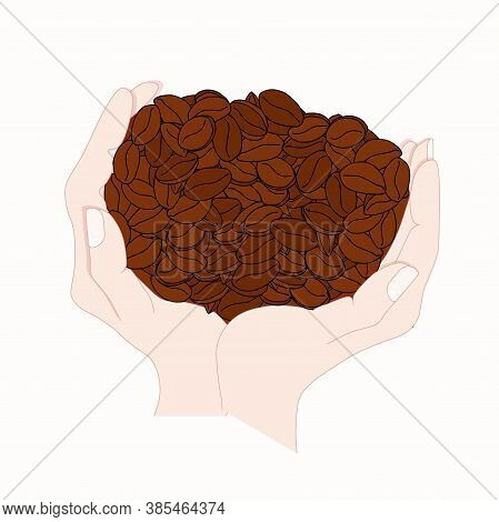 Coffee Beans In Hands. Art Colorful Design Element Stock Vector Illustration For Product Design, For