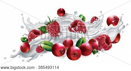 Cranberries And Raspberries In A Yogurt Or Milk Splash.