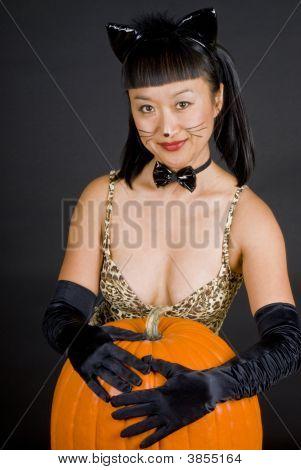 Asian Cat Woman Series