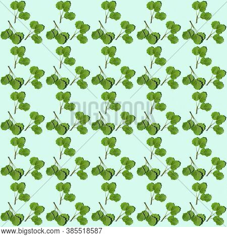 Seamless Regular Creative Pattern With Green Twigs With Aspen Leaves. Minimal Natural Plant Branch W