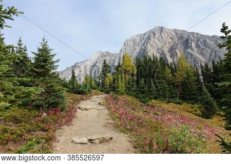 A Beautiful Trail Above The Treeline With A Huge Mountain In The Background During A Beautiful Sunny