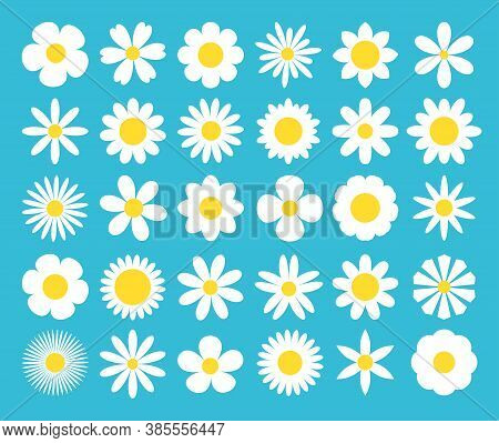 White Daisy Chamomile Icon. Camomile Super Big Set. Cute Round Flower Plant Nature Collection. Love
