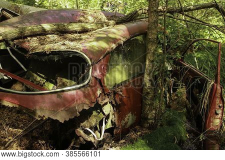 Old Rusty Car Wreck Abadoned In The Woods. Destroyed Enviroment.