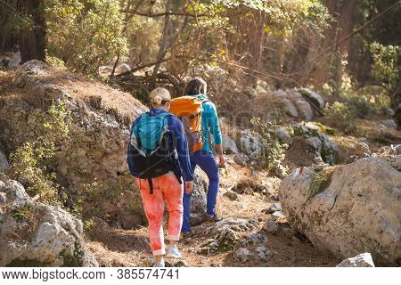 Two Girls Walk In The Woods. Hiking In The Mountains. Girlfriends Spend Time Together In Nature. Wom