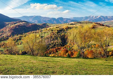 Mountainous Countryside Scenery On A Sunny Day. Beautiful Rural Landscape In Autumn Season. Trees In