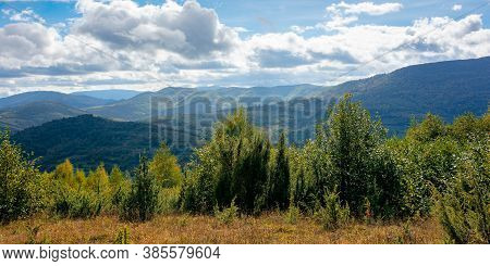 Mountainous Countryside In Autumn. Beautiful Nature On A Sunny Day. Dry Grass On The Meadow. Ridge I