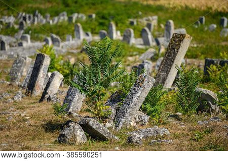 Old ruined tombstones at the cluttered ancient obsolete Jewish cemetery in Vadul liu Rascov in Moldova