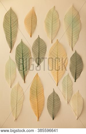 Artificial autumn leaves pattern, closeup, flat lay