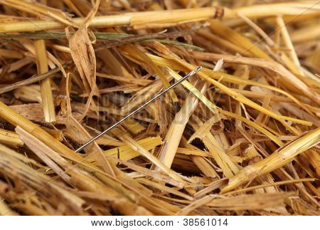 Needle in a haystack close-up poster