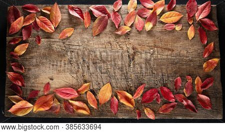 Red and Yellow Leaves on an Old Wooden Background