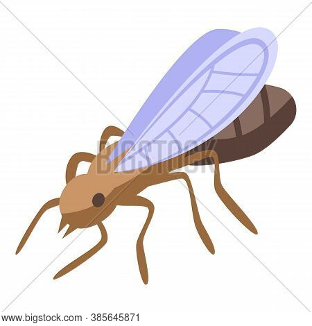 Ant Fly Icon. Isometric Of Ant Fly Vector Icon For Web Design Isolated On White Background