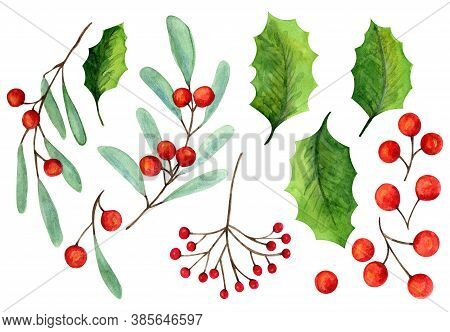 Set Of Bright Watercolor Mistletoe And Holly Berry Illustrations. Collection Of Watercolour Christma