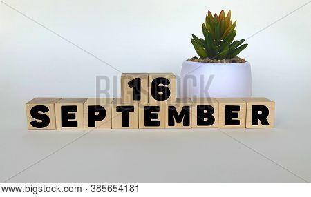 16 September .september 16 On Wooden Cubes On A White Background.pot With A Flower .calendar For Sep
