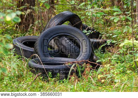 Discarded Car Tires In The Forest - Illegal Landfill, Problem Of Nature Pollution With Consumer Wast