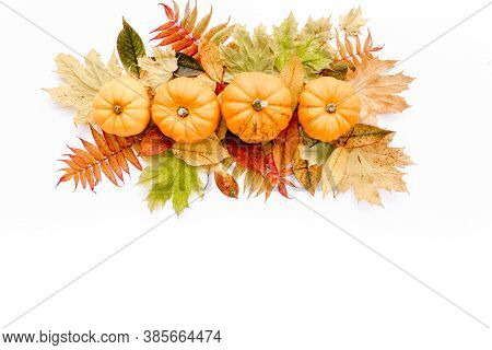 Pattern Made Of Dry Autumn Leaves, Pumpkins And Cotton. Fall Flat Lay. Top View. Autumn Minimal Conc