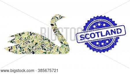 Military Camouflage Combination Of Goose, And Scotland Unclean Rosette Stamp Seal. Blue Stamp Seal C