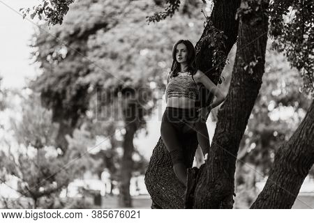 Woman In The Park On A Tree.