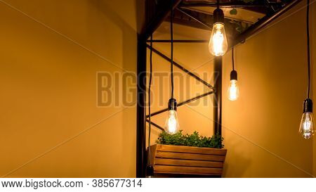 Pendant Edison Bulbs In A Cafe With Wooden Pots With Green Plants, Vegetarian Eco Friendly Interior