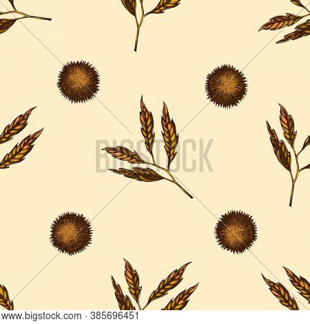 Seamless Pattern With Hand Drawn Colored Chestnut Stock Illustration