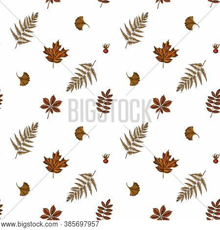 Seamless Pattern With Hand Drawn Colored Fern, Dog Rose, Rowan, Ginkgo, Maple, Horse Chestnut Stock