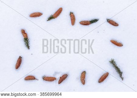 Frame Of Fir Cones On White Snow. Christmas Framework With Snow And Cones, White Background