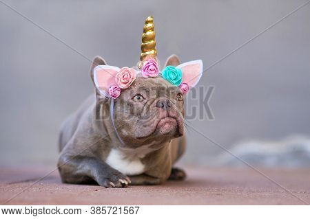 French Bulldog Dog Dressed Up As Unicorn Wearing Beautiful Headband With Pastel Colored Flowers And