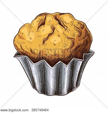 Hand Drawn Muffin Isolated On White. Colored Sketch Of Fresh Baked Muffin In Vintage Style. Engraved