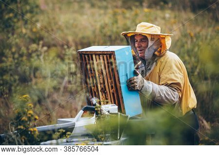 Portrait Of A Beekeeper In Protective Wear Working With The Bee Smoker Equipment. Beekeeping Concept