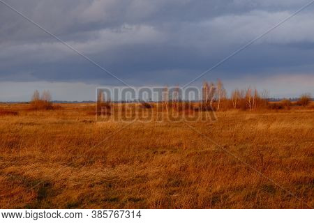 Cloudy Dramatic Sky Over The Autumn Steppe. Bright Dry Field Herbs.