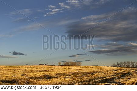 Morning Sun Rise Over A Prairie Farm With A Swathed Field In Rocky View County Alberta Canada