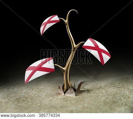 3d Illustration. 3d Sprout With Alabama Flag On Black