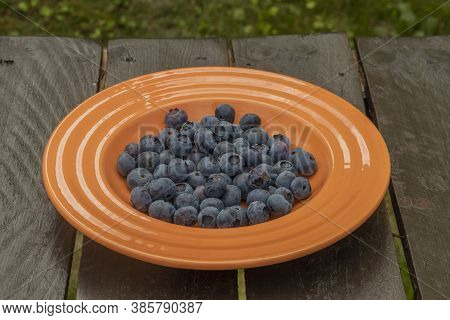 Bilberry From Canada On Orange Plate And Brown Wooden Table