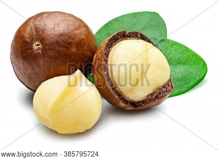 Macadamia nuts with peeled macadamia and leaves isolated on a white background.