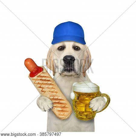A Dog In A Blue Cap Is Eating A French Hot Dog And Drinking Beer From A Mug. White Background. Isola