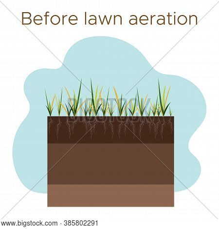 Lawn Care - Aeration And Scarification. Labels By Stage-before. Intake Of Substances-water, Oxygen,