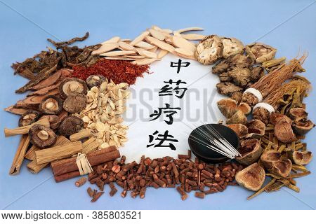 Chinese herbs with acupuncture needles used in herbal medicine with calligraphy script on rice paper.  Health care concept. Translation reads as Traditional Chinese Herbal Therapy.