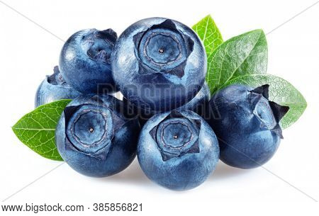 Blueberries with blueberry leaves isolated on a white background.