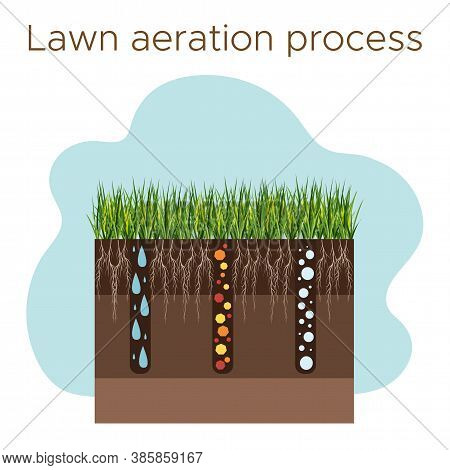 Lawn Care - Aeration And Scarification. Labels By Stage-during. Intake Of Substances-water, Oxygen,