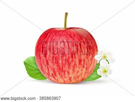 One Red Apple With Green Leaf Isolated On White With Clipping Path